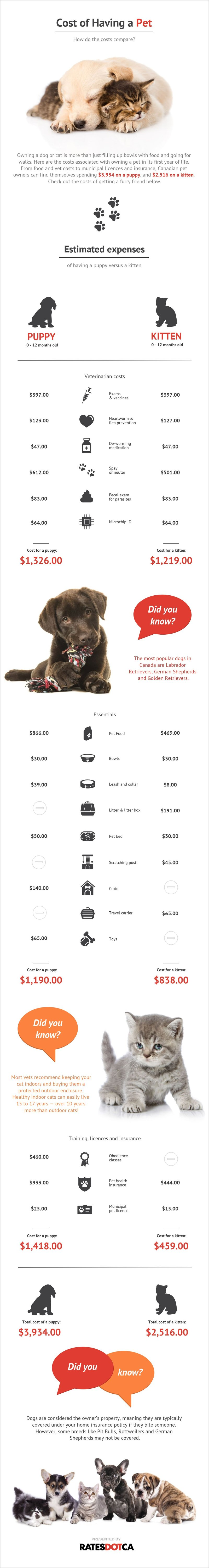 Cost of a Pet in Canada Infographic