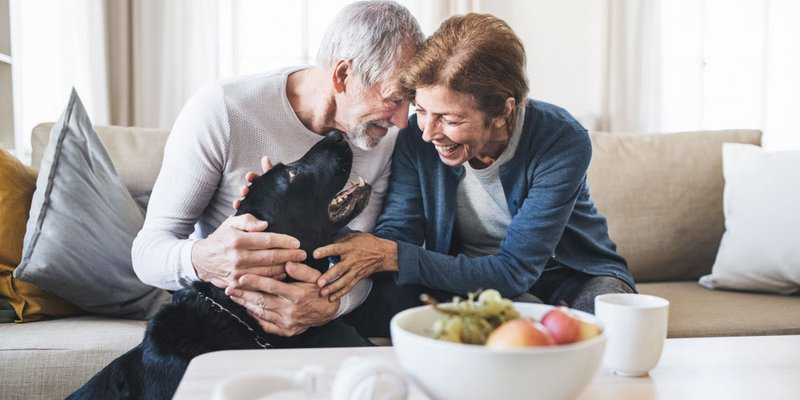 An older couple play with a dog as they sit on the couch