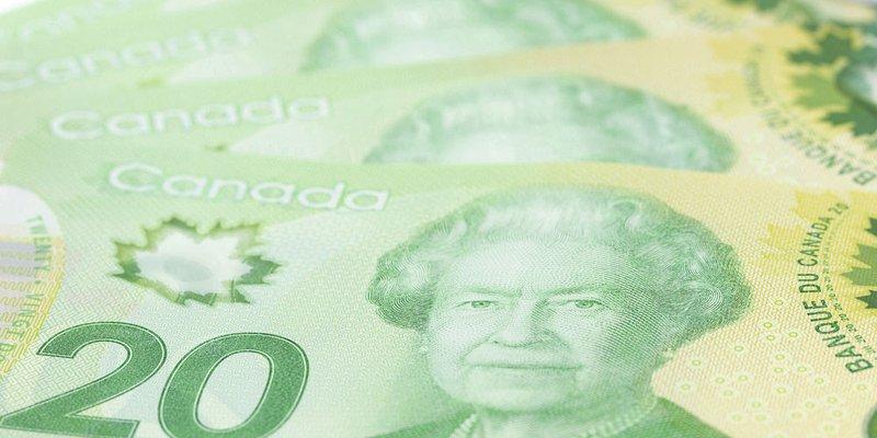 A spread of Canadian twenty-dollar bills