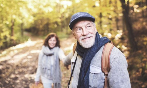 An older couple walk hand in hand in the woods